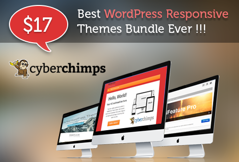 Responsive WordPress Theme Pack- 3 Premium CyberChimps Themes | DealFuel