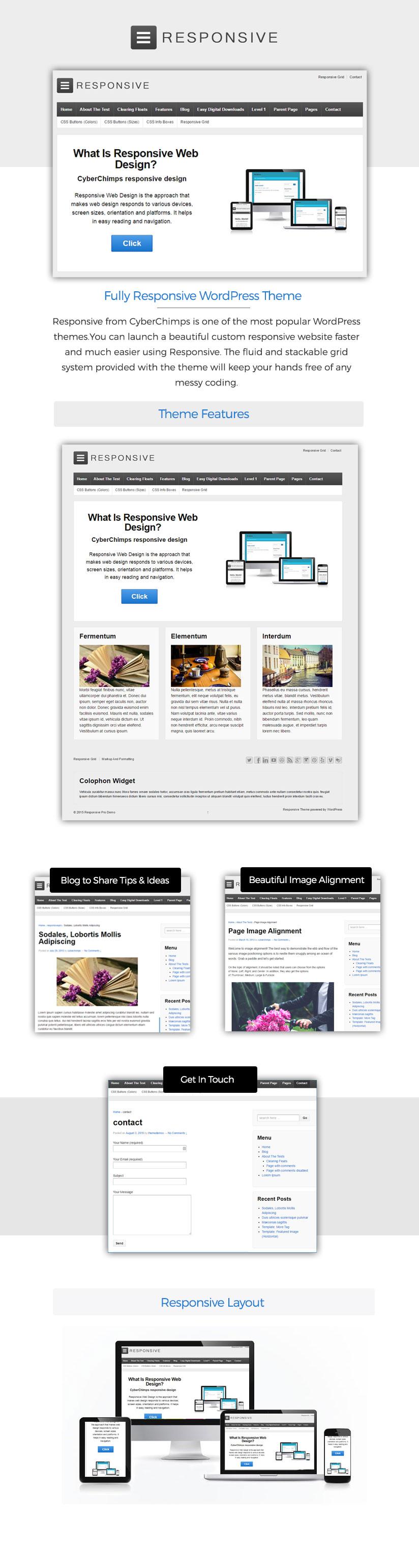 Responsive WP Website Theme