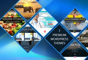 WordPress premium responsive themes