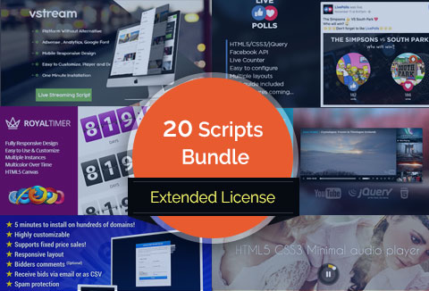 20 web-scripting-bundle