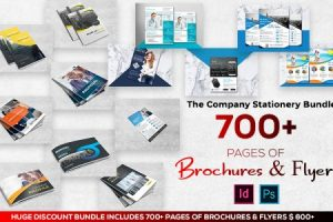 A Company Stationery Bundle Of 50 Brochures With 600+ Pages & 50 Flyers