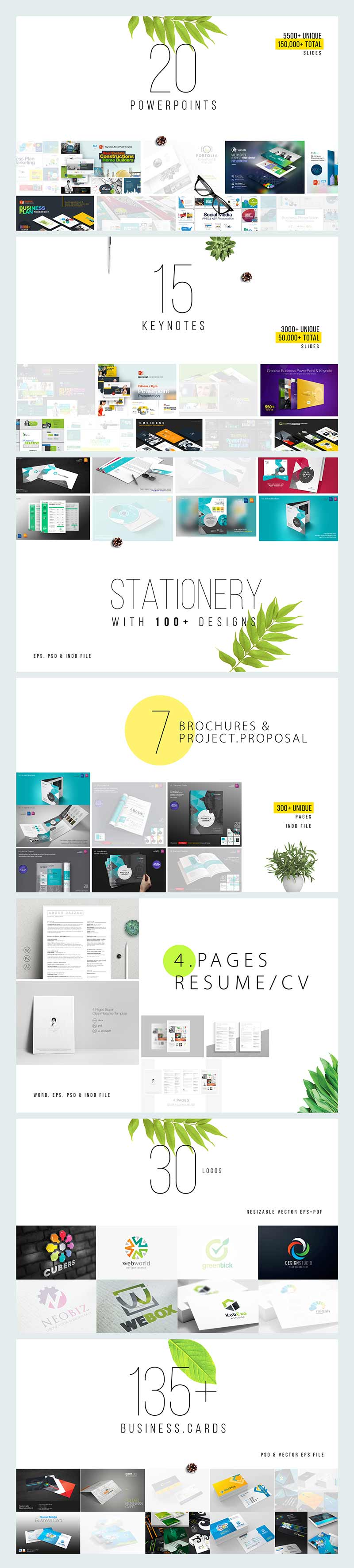 Entire Shop - Business Presentation & Print Bundle | Preview - 2 Summary