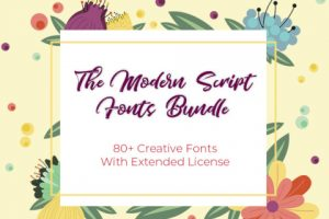 modern script font bundle