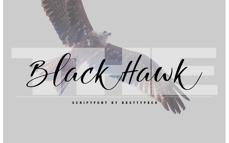 51 Elegant & Creative Fonts From The Amazing Fonts Bundle - Blackhawk