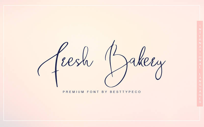 51 Elegant & Creative Fonts From The Amazing Fonts Bundle - Fresh-Bakery
