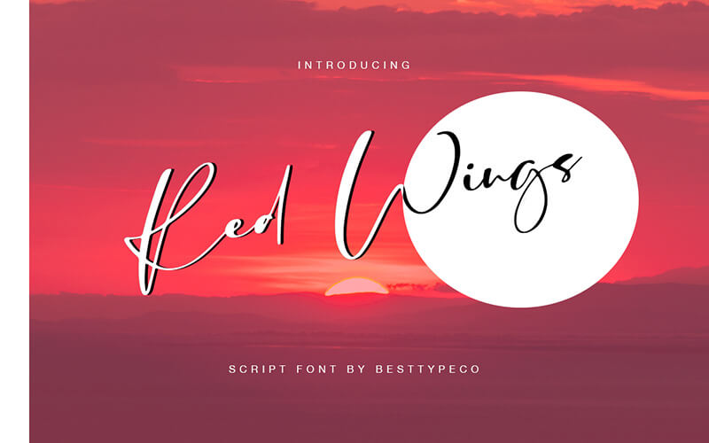 51 Elegant & Creative Fonts From The Amazing Fonts Bundle - Red-Wings