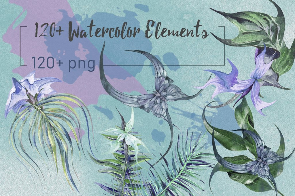 Collection of 120 Watercolor Floral Elements