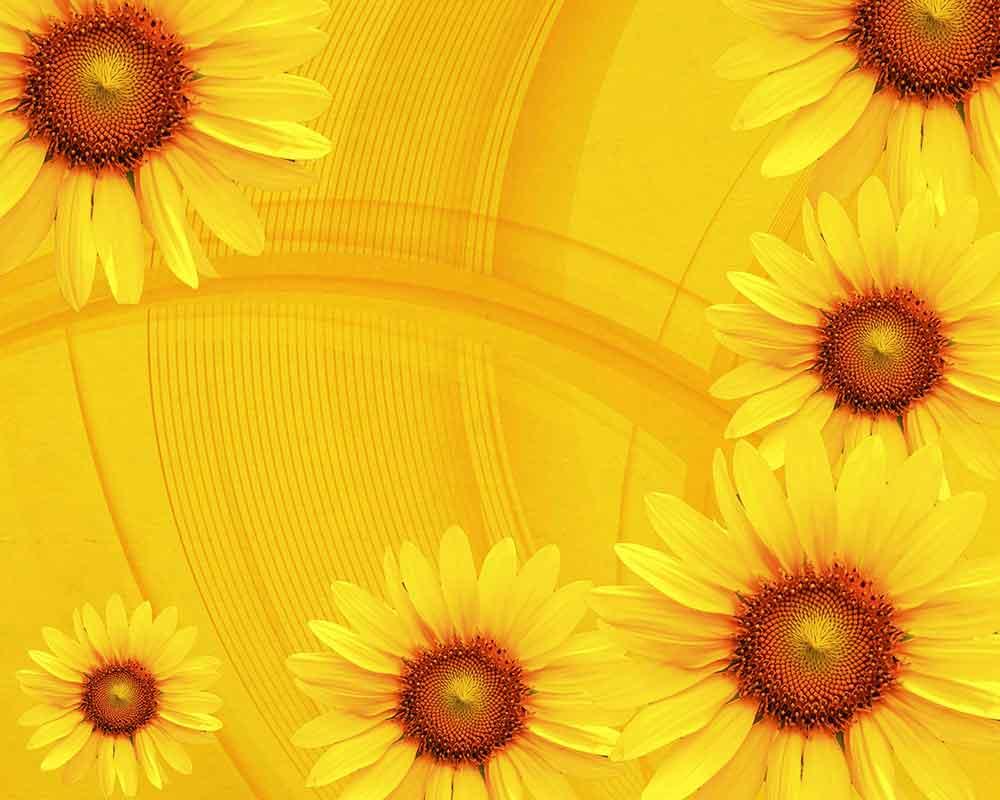 yellow background wallpaper